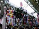 Tanabata090808